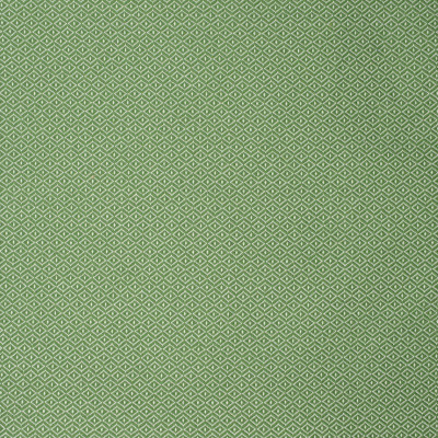 S2251 Green Fabric: S25, DIAMOND, DOT, GREEN DIAMOND, GREEN, INSIDE OUT, PERFORMANCE, OUTDOOR FABRIC, ANNA ELISABETH