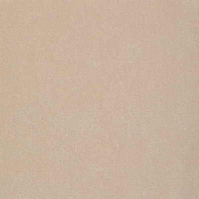 S2293 Flax Fabric: S26, ANNA ELISABETH, CRYPTON, PERFORMANCE, CRYPTON FINISH, CRYPTON HOME, EASY TO CLEAN, ANTI-MICROBIAL, STAIN RESISTANT, SOLID VELVET, VELVET CRYPTON, OFF WHITE, NEUTRAL, BEIGE, FLAX, NEUTRAL VELVET, VELVET