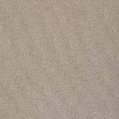 S2297 Stone Fabric: S26, ANNA ELISABETH, CRYPTON, PERFORMANCE, CRYPTON FINISH, CRYPTON HOME, EASY TO CLEAN, ANTI-MICROBIAL, STAIN RESISTANT, SOLID VELVET, SOLID GRAY VELVET, GRAY VELVET, VELVET, GRAY