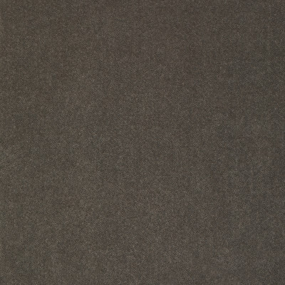 S2306 Slate Fabric: S26, ANNA ELISABETH, CRYPTON, PERFORMANCE, CRYPTON FINISH, CRYPTON HOME, EASY TO CLEAN, ANTI-MICROBIAL, STAIN RESISTANT, SOLID VELVET, GRAY VELVET, SOLID GRAY VELVET, CRYPTON VELVET, GRAY, SLATE, VELVET