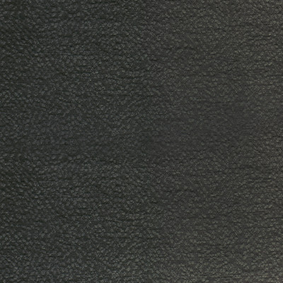S2310 Flannel Fabric: S26, ANNA ELISABETH, CRYPTON, PERFORMANCE, CRYPTON FINISH, CRYPTON HOME, EASY TO CLEAN, ANTI-MICROBIAL, STAIN RESISTANT, SOLID BLACK, BLACK SOLID, TEXTURE, BLACK TEXTURE, BLACK CRYPTON, BLACK