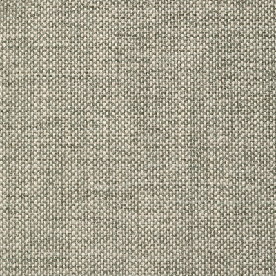 S2354 Eucalyptus Fabric: S27, ANNA ELISABETH, CRYPTON, CRYPTON HOME, PERFORMANCE, KID FRIENDLY, PET FRIENDLY, ANTI-MICROBIAL, STAIN RESISTANT, EASY TO CLEAN, EUCALYPTUS, GREEN, SOLID GREEN, GREEN TEXTURE, NFPA260, NFPA 260