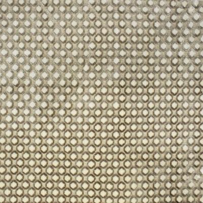S2522 Fog Fabric: S32, ANNA ELISABETH, DOT TEXTURE, CUT VELVET, DOT CUT VELVET, GRAY TEXTURE DOT, VELVET DOT