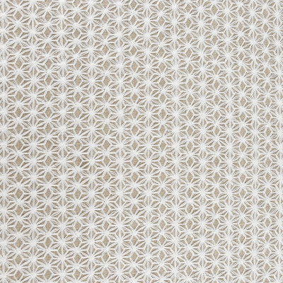 S2647 Oyster Fabric: S34, WINDOW, ANNA ELISABETH, DRAPERY, EMBROIDERY, ALL OVER EMBROIDERY, WHITE, NEUTRAL, WHITE GEOMETRIC, WHITE EMBROIDERY, GEOMETRIC EMBROIDERY, NEUTRAL EMBROIDERY
