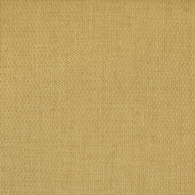 S2734 Maize Fabric: S36, ANNA ELISABETH, CRYPTON, CRYPTON HOME, PERFORMANCE, EASY TO CLEAN, ANTI-MICROBIAL, STAIN RESISTANT, NFPA260, NFPA 260, GOLD, SOLID, TEXTURE, GOLD TEXTURE, SOLID GOLD