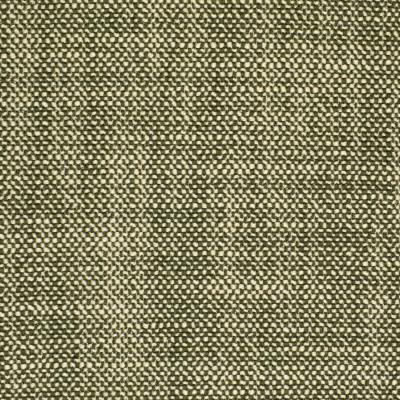 S2871 Basil Fabric: S38, ANNA ELISABETH, NFPA260, NFPA 260, SOLID, GREEN, WOVEN, BASIL, GREEN WOVEN, GREEN SOLID, SOLID GREEN, BASKET WEAVE, BASKETWEAVE