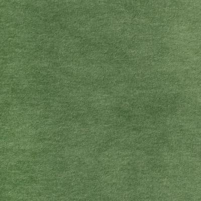 S2875 Fern Fabric: S38, ANNA ELISABETH, NFPA260, NFPA 260, FERN, SOLID, VELVET, GREEN, GREEN VELVET, SOLID VELVET