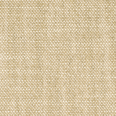 S2920 Sand Fabric: S39, ANNA ELISABETH, NFPA260, NFPA 260, SOLID, NEUTRAL, NEUTRAL SOLID, NEUTRAL TEXTURE, TEXTURE, BASKET WEAVE, BASKETWEAVE, BEACH, TROPICAL