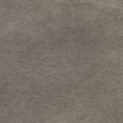 S2976 Ash Fabric: S40, ANNA ELISABETH, NFPA260, NFPA 260, SOLID, VELVET, GRAY, GRAY VELVET, SOLID GRAY, SOLID VELVET