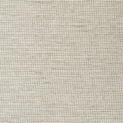 S3814 Fog Fabric: S51, SOLID, METALLIC, WOVEN, GRAY, GREY, FOG