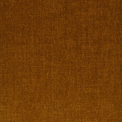 S3935 Honey Fabric: S53, SOLID, CHENILLE, PLUSH, PERFORMANCE, HONEY, GOLD