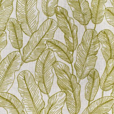 S3956 Fern Fabric: S53, FOLIAGE, TROPICAL, EMBROIDERY, GREEN, FERN