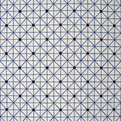 S4008 Porcelain Fabric: S54, GEOMETRIC, CONTEMPORARY, EMBROIDERY, BLUE, PORCELAIN, WINDOW