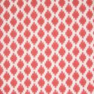 B6670 Watermelon Fabric
