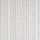B7611 Indigo Fabric
