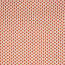 S2254 Spice Fabric