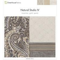 D43: Natural Studio IV
