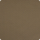 204500 Thyme Fabric