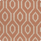 204594 Canyon Fabric