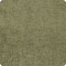 204605 Sage Fabric