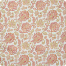 204609 Canyon Fabric