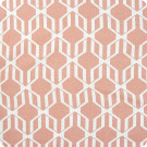 204616 Canyon Fabric