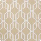 204617 Cashew Fabric