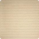 A1231 Mocha Fabric