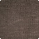 A2169 Chocolate Fabric