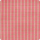 A3460 Strawberry Fabric