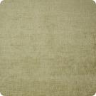 A4281 Aloe Fabric