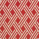 A4761 Rust Fabric
