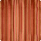 A4902 Spice Fabric