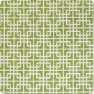 A6345 Kiwi Fabric