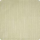 A6353 Kiwi Fabric