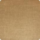 A6481 Caramel Fabric