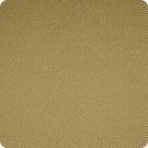 A7264 Tobacco Fabric