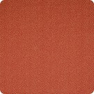 A7281 Jester Fabric