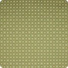 A7315 Kiwi Fabric