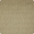 A7542 Oatmeal Fabric