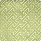 A7896 Kiwi Fabric