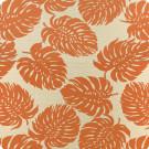 A8035 Tangerine Fabric