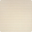 A8076 Champagne Fabric