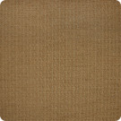 A8984 Latte Fabric