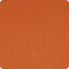 A9499 Pumpkin Fabric