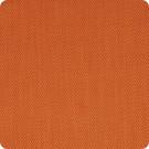A9499 Pumpkin Fabric