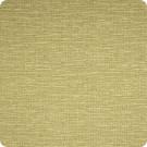 B1110 Lime Fabric