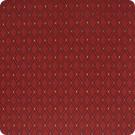 B1657 Curry Fabric