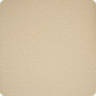 B1983 Bagel Fabric