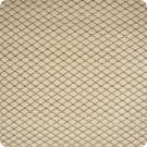 B2017 Latte Fabric